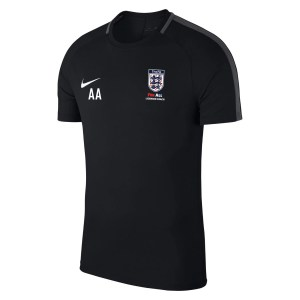 Nike Academy 18 Short Sleeve Top (m)