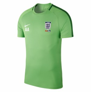 Nike Academy 18 Short Sleeve Top (M) Lt Green Spark-Pine Green-White