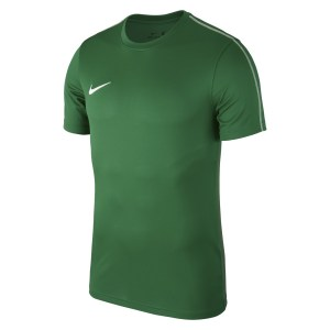 Nike Park 18 Short Sleeve Shirt Pine Green-White-White