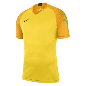 Nike Gardien Short Sleeve Goalkeeper Shirt Tour Yellow-University Gold-Black