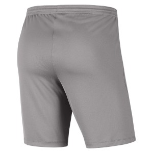 Nike Park III Shorts Pewter Grey-Black