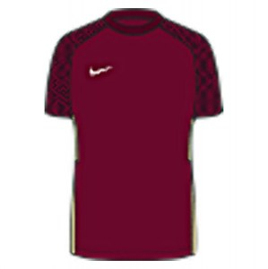 Nike Strike II Jersey (M) Team Red-Jersey Gold-White
