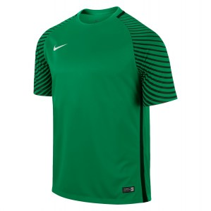 Nike Gardien Short Sleeve Football Goalkeeper Jersey