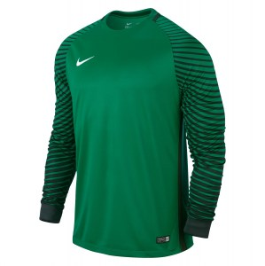 Nike Gardien Long Sleeve Football Goalkeeper Jersey Lucid Green-Grove Green-White