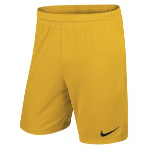 Nike Park II Knit Short University Gold-Black